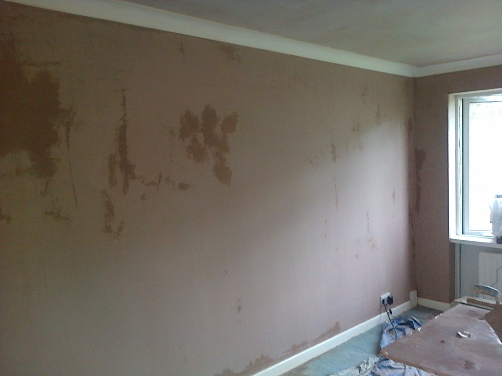 Leominster, Ludlow and Tenbury Wells plasterer